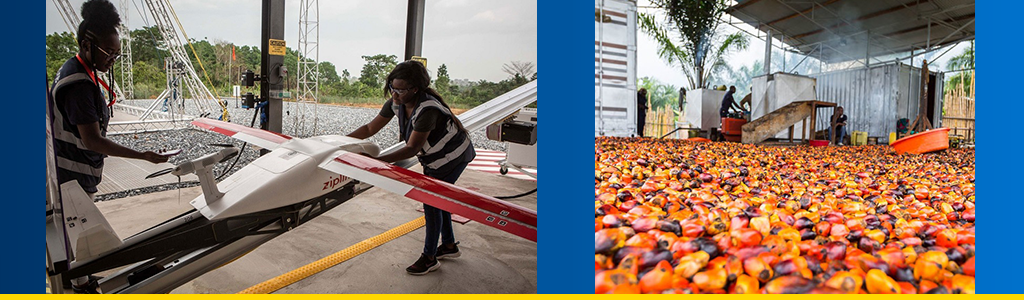 Covid-19 test samples are loaded onto a drone in Ghana for delivery to a lab; farmer walks near a pile of rotting peppers