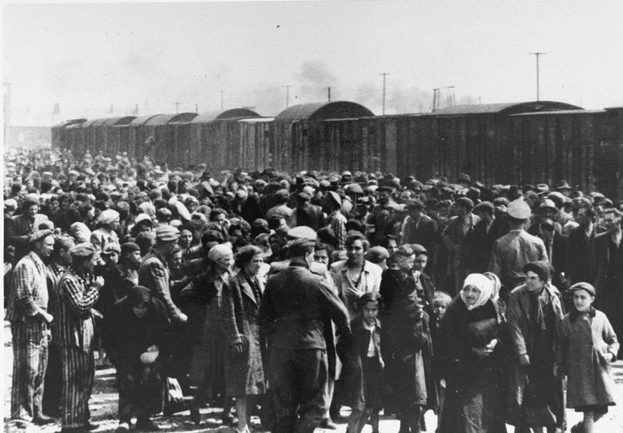 people arrive at Auschwitz camp in May 1944