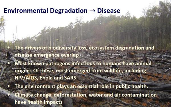 Environmental Degradation → Disease  •	The drivers of biodiversity loss, ecosystem degradation and disease emergence overlap •	Most known pathogens infectious to humans have animal origins. Of these, most emerged from wildlife, including HIV/AIDS, Ebola and SARS. •	The environment plays an essential role in public health. •	Climate change, deforestation, water and air contamination have health impacts.